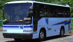omnibus - Nutzfahrzeuge aller Art